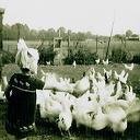 Foto uit de jaren vijftig