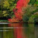 Herfstkleuren Engelse Werk