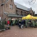 Kerstboomverkopers SV Dalfsen weer in actie