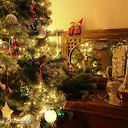 Foto van de maand van Ank voor december