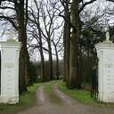 """""""Berken Horst"""" Hoonhorst snoei- en plantwerkzaamheden"""