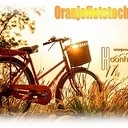 Oranje fietstocht Hoonhorst