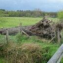Ooievaars in Hoonhorst troosteloos na storm