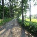 Wandeling Oude Vechtsteeg, met geschiedenis Koningsweg