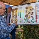Kleine markt bij Lindehoeve Dalfsen
