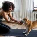 Maak het uzelf en uw hond gemakkelijk met een paar tips
