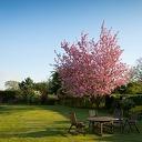 Een perfect aangelegde tuin die weinig onderhoud vraagt